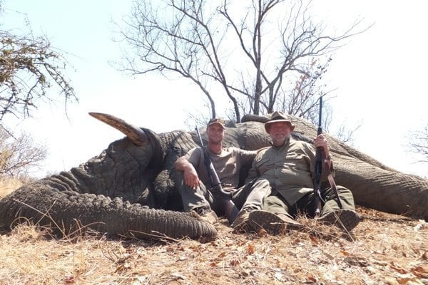 Elephant hunting next to Kruger National Park (Limpopo, and Mpumalanga)