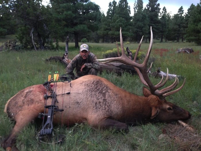 "Trophy quality on ALL these Arizona elk hunts is VERY good, however many bulls will have broken antlers during the late season. Hunters can expect to see 370″ class bulls in the premier units and 340-350″ bulls on the ""lesser"" quality units. Bulls above 400″ are taken in Arizona every year."