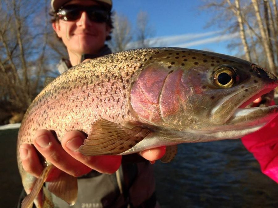 Winter Fly Fishing on the Yakima River