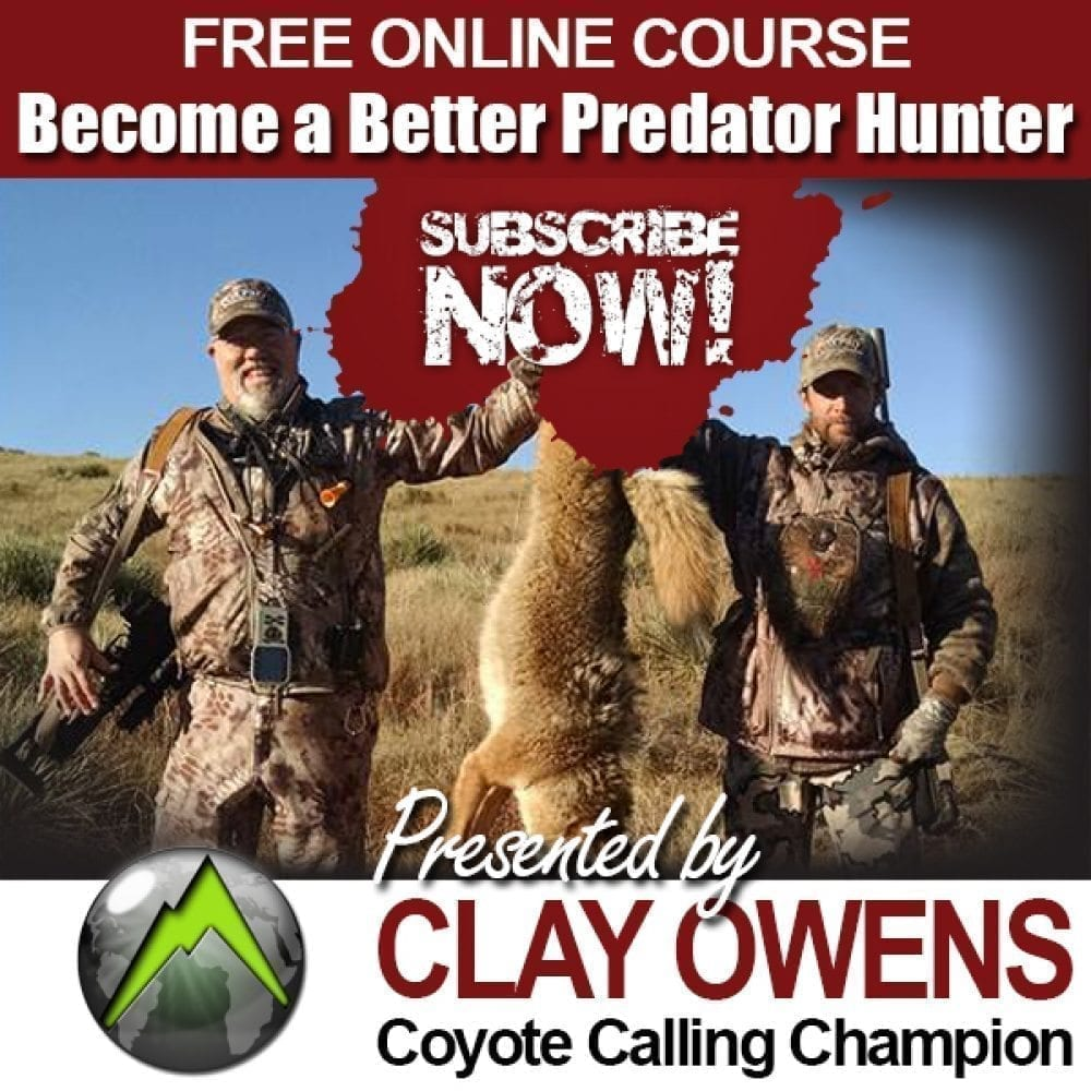 Online Hunting Course - Become Better at Predator Calling