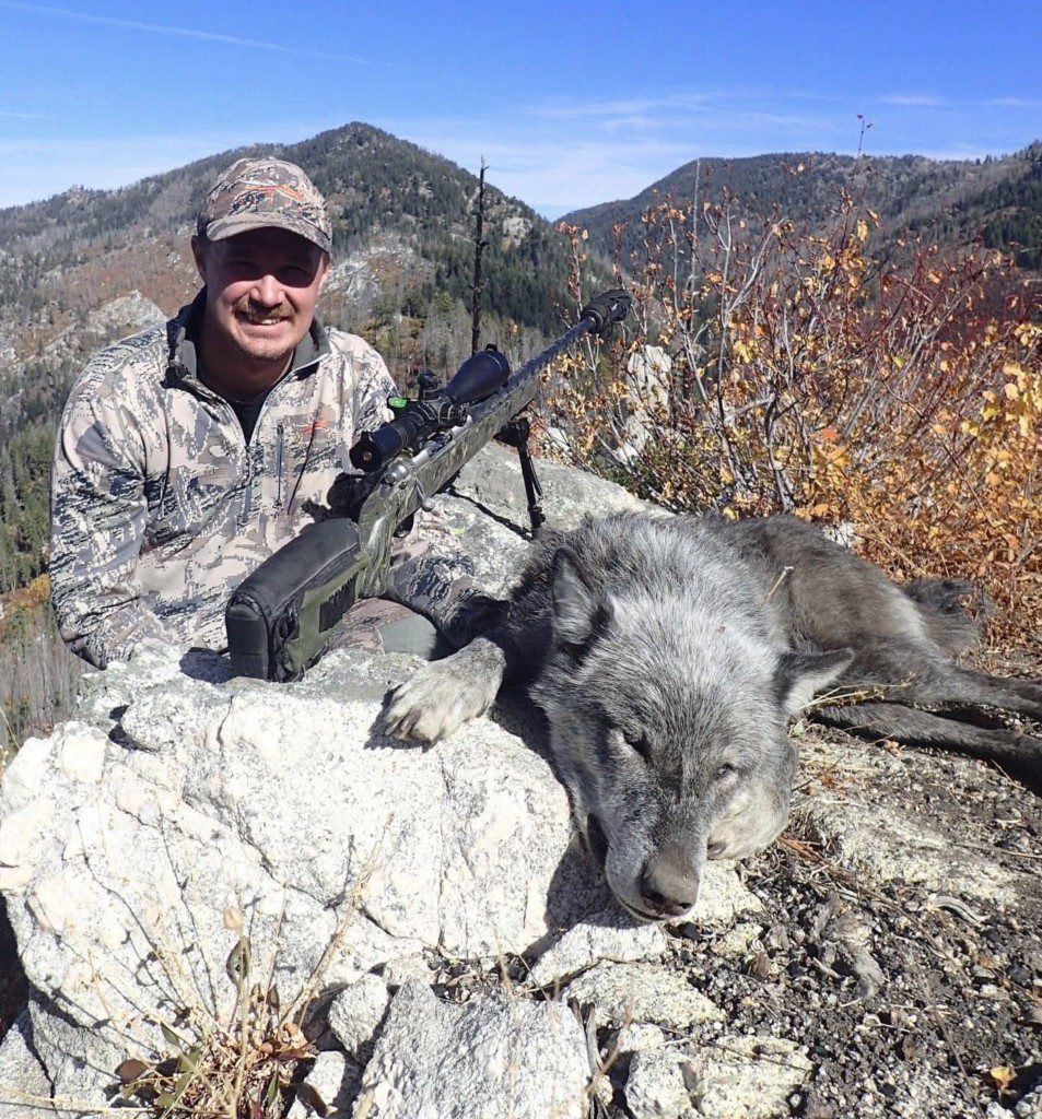 Idaho Deer Hunt turns into a wolf hunt