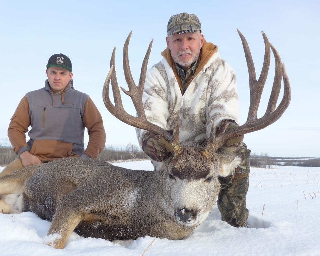 A giant muley taken on one of our Alberta mule deer hunts
