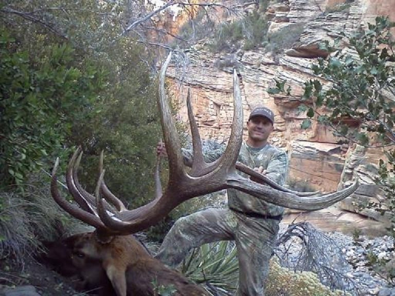 Arizona Unit 8 elk
