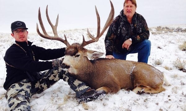 A giant, wide-framed Colorado mule deer