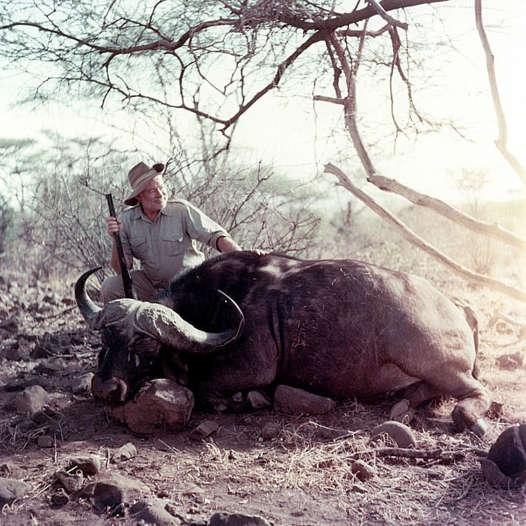Ernest Hemingway poses with a cape buffalo he shot in 1953.