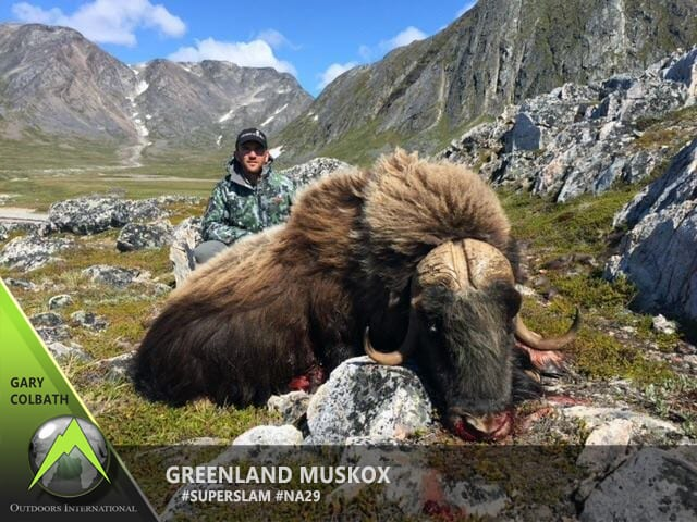 Gary Colbath's Boone and Crockett archery Greenland muskox