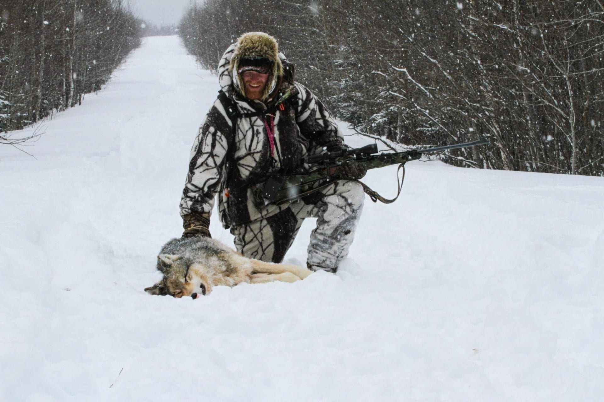 Ontario Wolf Hunting