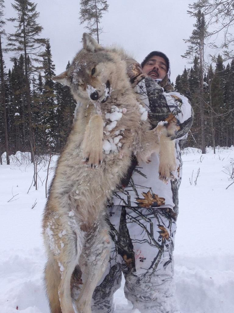 Our Ontario wolf hunting clients have had tremendous success over the years.