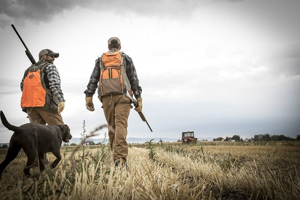 Upland Bird Hunters with Dog