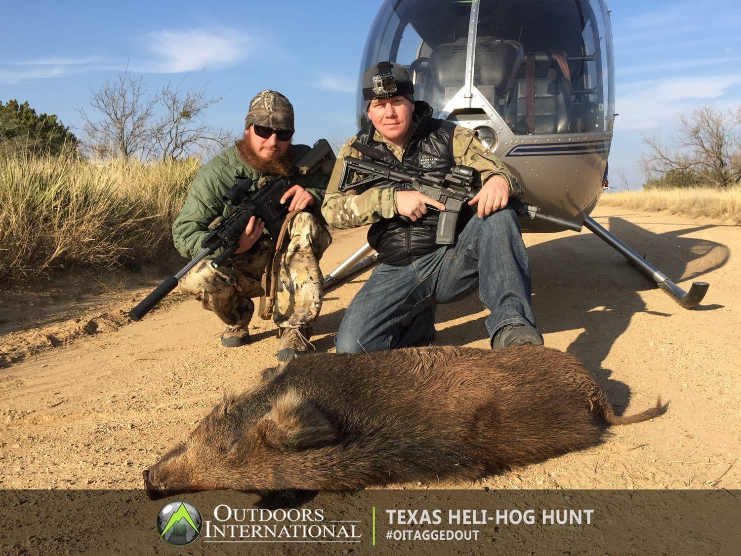 LOTS of pigs and high success is the norm. On a good heli-hog hunting outing, you can shoot over 50 hogs!