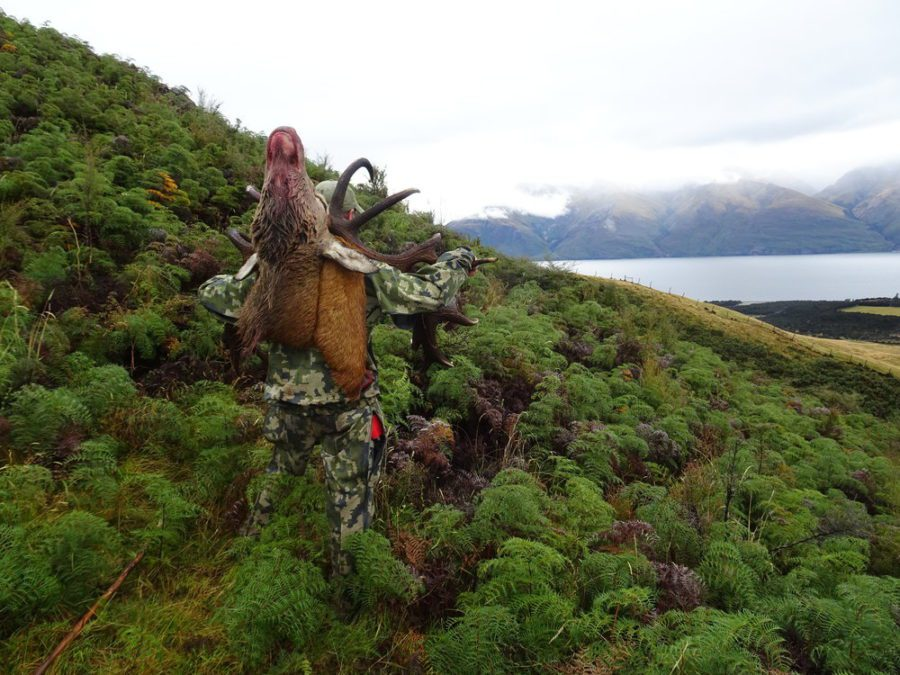On our tahr and red stag combo hunt you'll be hunting some beautiful country..