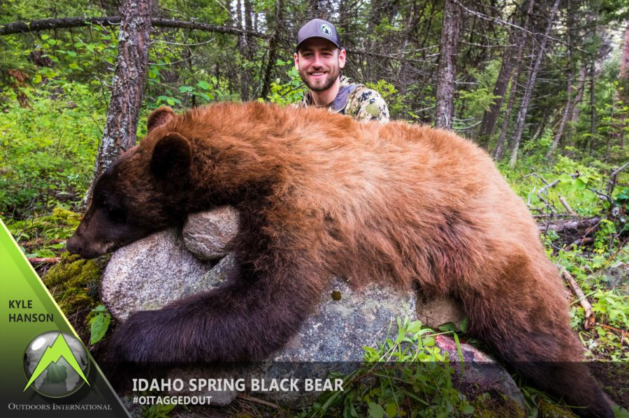 Kyle Hanson's beautiful Idaho spring bear